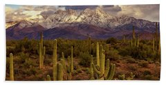 Beach Towel featuring the photograph Snowy Dreams by Rick Furmanek