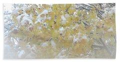 Beach Towel featuring the photograph Snowy Maple by PJ Boylan