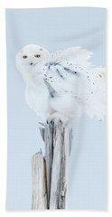 Snowy Owl Feather Shake Beach Towel