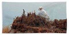 Snowy Owl In The Dunes Beach Sheet
