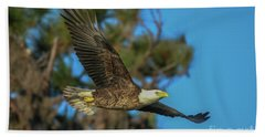 Beach Towel featuring the photograph Soaring Eagle by Tom Claud