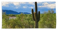 Sonoran Desert Landscape Post-monsoon Beach Sheet