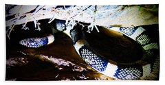 Beach Towel featuring the photograph Sonoran Desert Longnosed Snake by Judy Kennedy