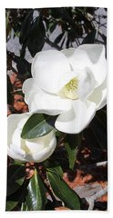 Sosouthern Magnolia Blossoms Beach Sheet