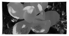 Southern Magnolia In Black And White Beach Towel