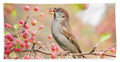 Beach Towel featuring the photograph Sparrow Eating Berries by Top Wallpapers