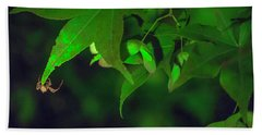 Spider At Night On A Leaf Beach Towel