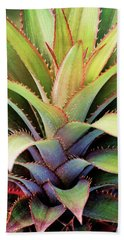 Beach Towel featuring the photograph Spiny Succulent I by Leda Robertson