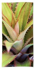 Beach Towel featuring the photograph Spiny Succulent II by Leda Robertson