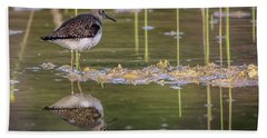 Spotted Sandpiper Reflection Beach Towel
