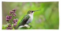 Spring Beauty Ruby Throat Hummingbird Beach Towel