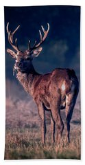 Stag Eating Beach Towel