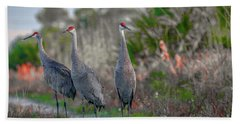 Beach Towel featuring the photograph Standing Sandhills by Tom Claud