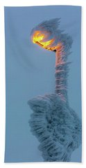 Beach Towel featuring the photograph streetlight on the Brocken, Harz by Andreas Levi