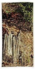 Stump In Swamp Beach Sheet
