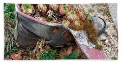 Succulents In A Boot Beach Sheet