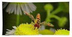 Sugar Bee Wings Beach Sheet