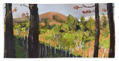 Beach Towel featuring the painting Summer At Pink  Knob In Ellijay by Jan Dappen