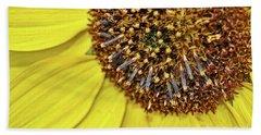 Sunflower Closeup Beach Towel