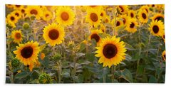 Sunflowers Field Beach Towel