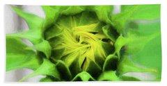 Sunflowers  Helianthus 030 Beach Sheet