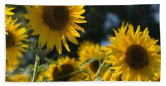 Sweet Sunflowers Beach Sheet