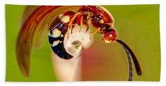 Swirly Wasp Beach Sheet