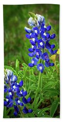 Texas Bluebonnet  Beach Towel