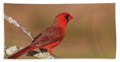 Texas Cardinal Beach Towel
