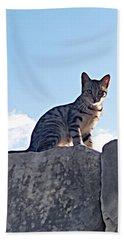 The Cat Beach Towel