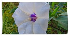 The Perfect Flower - Sacred Datura Beach Sheet