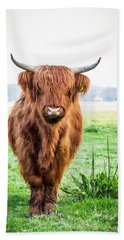 Beach Towel featuring the photograph The Scottish Highlander by Anjo Ten Kate