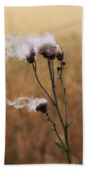 Thistle Down Beach Towel