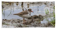 Three-banded Plover Beach Towel