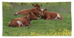 Beach Towel featuring the photograph Three Cows by PJ Boylan
