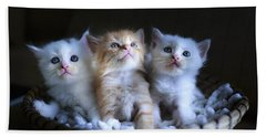 Three Little Kitties Beach Towel