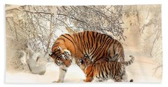 Tiger Family Beach Sheet