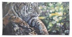 Tiger In Dappled Light Beach Sheet