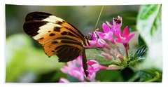 Tiger Longwing Butterfly Drinking Nectar  Beach Towel