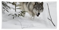 Timber Wolf Beach Sheet