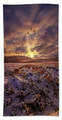 Beach Towel featuring the photograph Times They Changed by Phil Koch