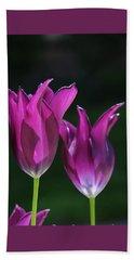 Translucent Tulips Beach Sheet