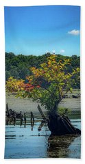 Beach Towel featuring the photograph Tree In Mallows Bay by Lora J Wilson