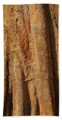 Tree Trunk And Bark Of Chambak Beach Towel