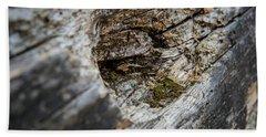 Tree Wood Beach Sheet