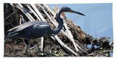 Tri-colored Heron 40312 Beach Sheet