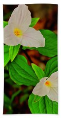 Trilliums Beach Towel