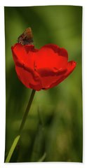 Tulip And Skipper Beach Towel