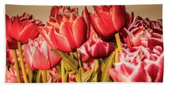 Beach Towel featuring the photograph Tulip Fields by Anjo Ten Kate