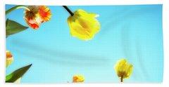 Tulips Holland Michigan 17 Beach Sheet